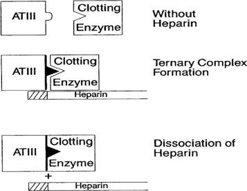 Parenteral Anticoagulants: American College of Chest