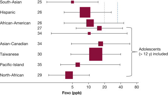 Does Ethnicity Influence Fractional Exhaled Nitric Oxide in Healthy