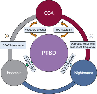 Sleep Disorders in Patients With Posttraumatic Stress