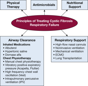 Critical Care of the Adult Patient With Cystic Fibrosis - ScienceDirect