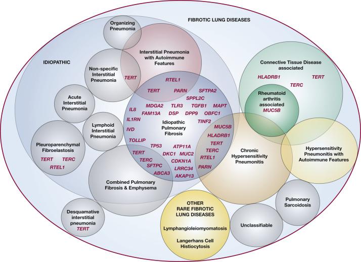 Integrating Genomics Into Management of Fibrotic