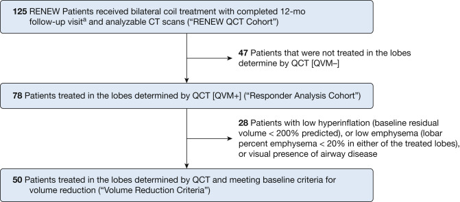 Predictors of Response to Endobronchial Coil Therapy in