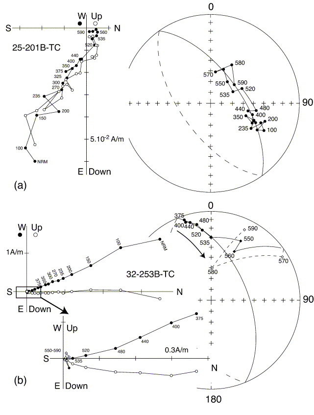 A New Late Cretaceous Paleomagnetic Pole For The West Of Amuria