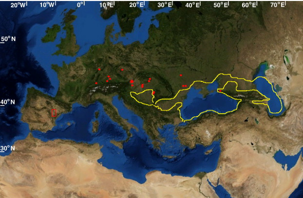 Miocene World Map.Late Miocene Washhouse Climate In Europe Sciencedirect