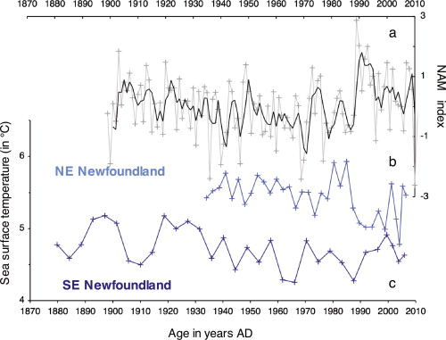 Labrador current variability over the last 2000 years