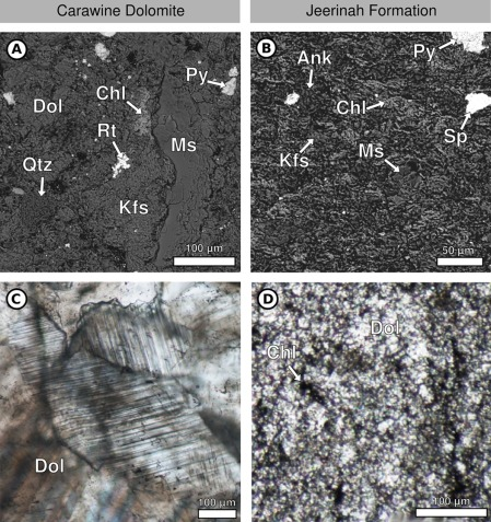 In search of early life: Carbonate veins in Archean