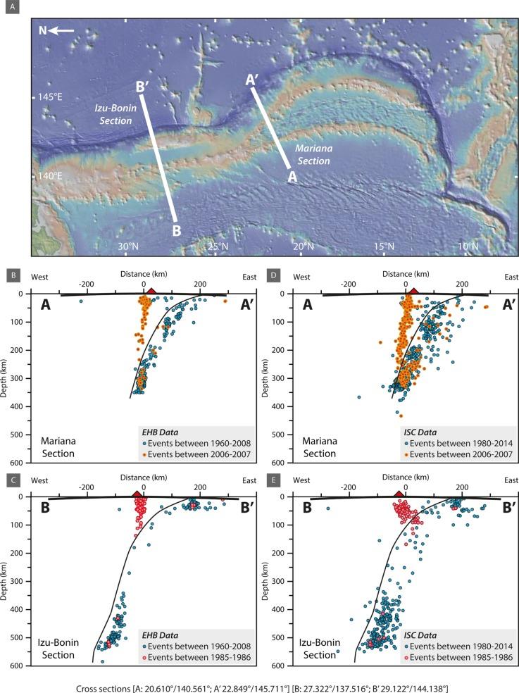 Earth's deepest earthquake swarms track fluid ascent beneath