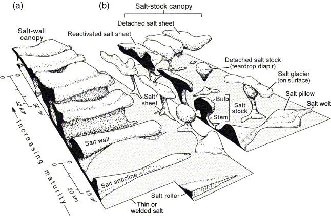 Block diagram showing schematic shapes of salt structures. Structural maturity and size increase toward the composite coalesced structures in the ...  sc 1 st  Science Direct & Terra infirma: Understanding salt tectonics - ScienceDirect