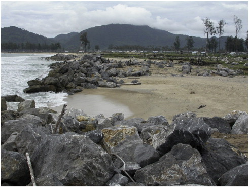 the use of boulders for characterising past tsunamis lessons from full size image