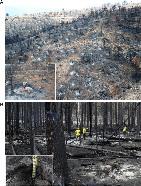 Wildland Fire Ash Production Composition And Eco Hydro Geomorphic