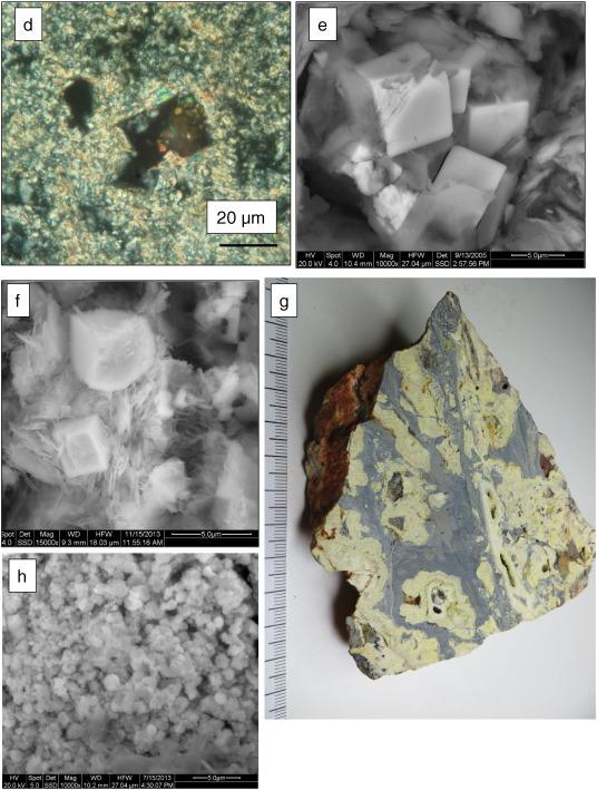 rocks and minerals dk handbooks