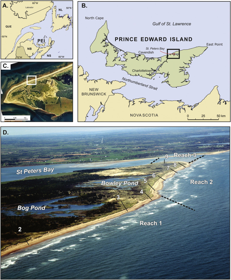 Scale-dependent perspectives on the geomorphology and