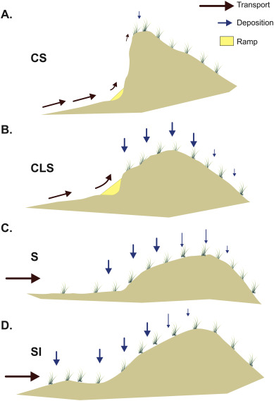 Scale Dependent Perspectives On The Geomorphology And