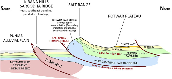 Petroleum systems and hydrocarbon potential of the North