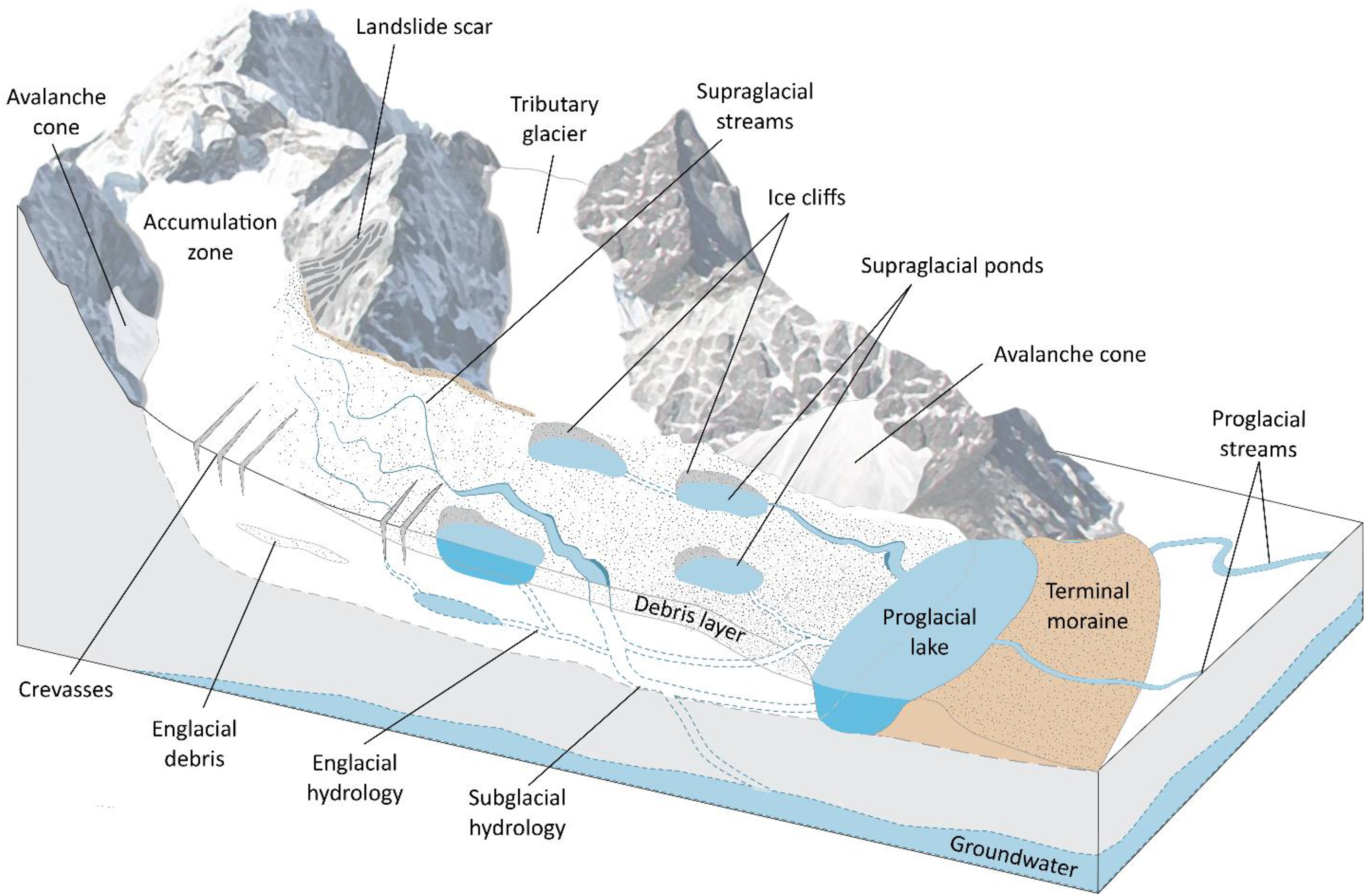 Diagram showing how surface water accesses the glacier bed