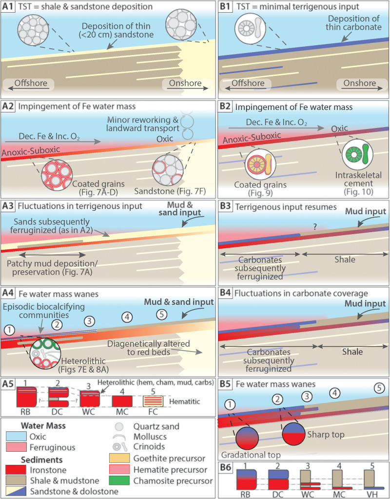 Clinton Ironstone Revisited And Implications For Silurian Earth System Evolution Sciencedirect