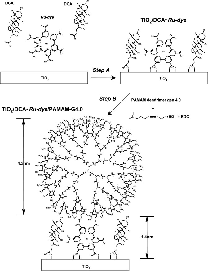 Controlling The Interfacial Concentrations Of I3 And Li Ions In