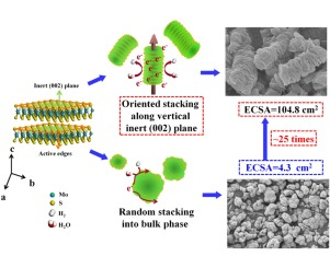 Oriented Stacking along Vertical (002) Planes of MoS2: A