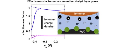 Physical Modeling of the Proton Density in Nanopores of PEM Fuel