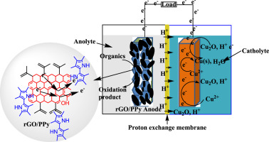 Modification of anode electrode in microbial fuel cell for
