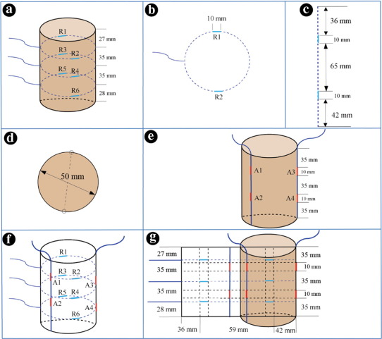 Investigation of the dynamic strain responses of sandstone using ...