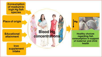 Total, methyl and inorganic mercury concentrations in blood