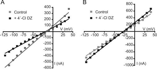 Benzodiazepine modulation of homomeric GABAAρ1 receptors