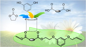 Resorcinol: A potentially bio-based building block for the preparation of  sustainable polyesters - ScienceDirect