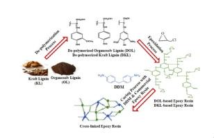 Curing kinetics and mechanical properties of bio-based epoxy