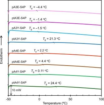 Bio-based polymer networks by thiol-ene photopolymerization of