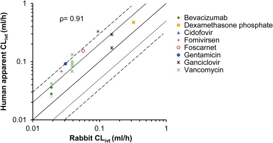 Rabbit As An Animal Model For Intravitreal Pharmacokinetics