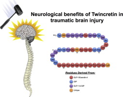 "Novel GLP-1R/GIPR co-agonist ""twincretin"" is neuroprotective"