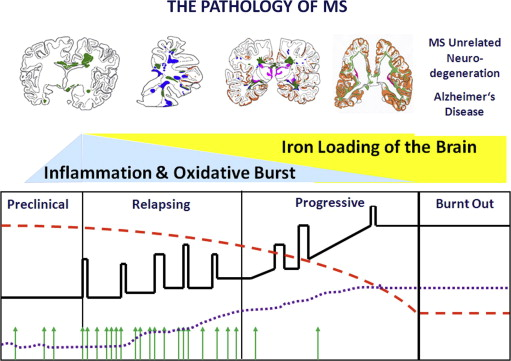 The molecular basis of neurodegeneration in multiple