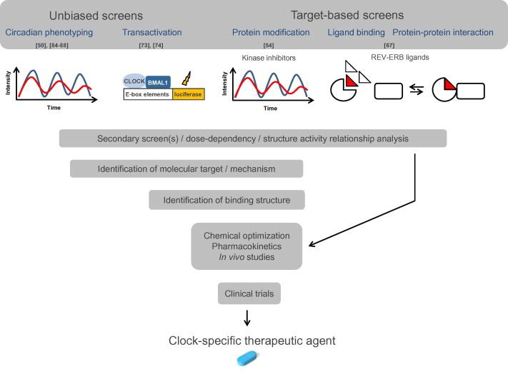 Chemical chronobiology: Toward drugs manipulating time