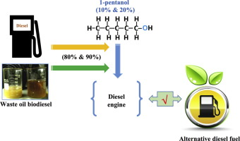 Influence of 1-pentanol additive on the performance of a diesel