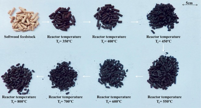 Quantifying self-heating ignition of biochar as a function of