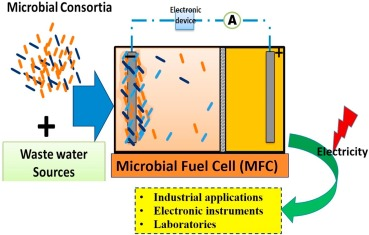 Microbial fuel cells (MFCs) for bioelectrochemical treatment