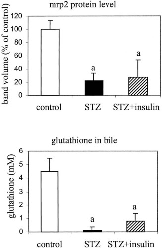 Differential Effects Of Streptozotocin Induced Diabetes On