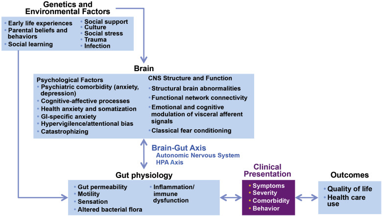Biopsychosocial Aspects of Functional Gastrointestinal