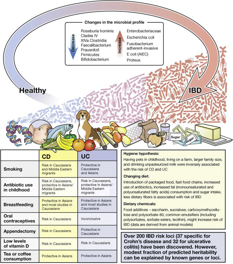 TSO kezelés és a bélbetegségek - Helmint terápia ibd