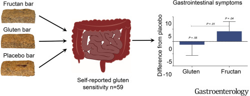 Fructan, Rather Than Gluten, Induces Symptoms in Patients