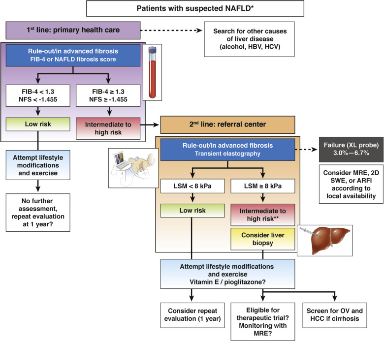Noninvasive Assessment of Liver Disease in Patients With