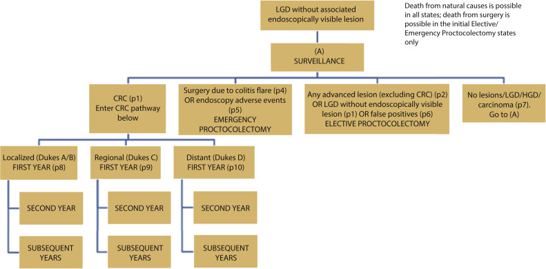 Surgery Versus Surveillance In Ulcerative Colitis Patients With Endoscopically Invisible Low Grade Dysplasia A Cost Effectiveness Analysis Sciencedirect