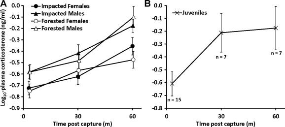 Innate immunity and stress physiology of eastern hellbenders