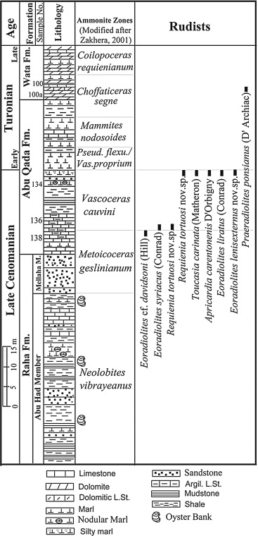 Cenomanian-Turonian rudists from Western Sinai, Egypt: Systematic