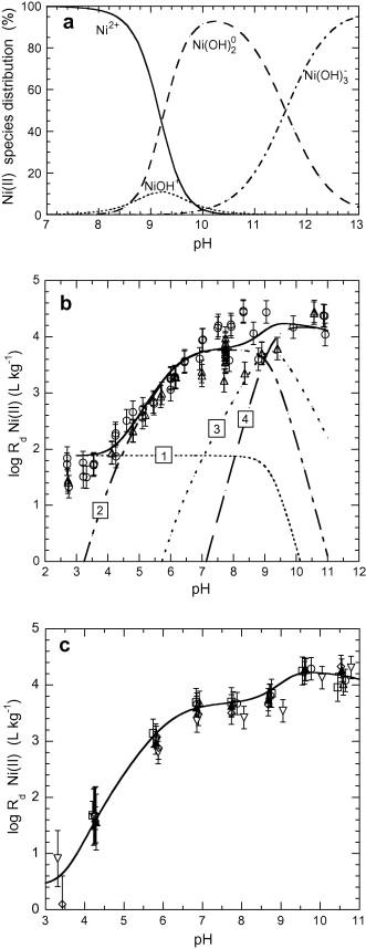 Sorption modelling on illite Part I: Titration measurements