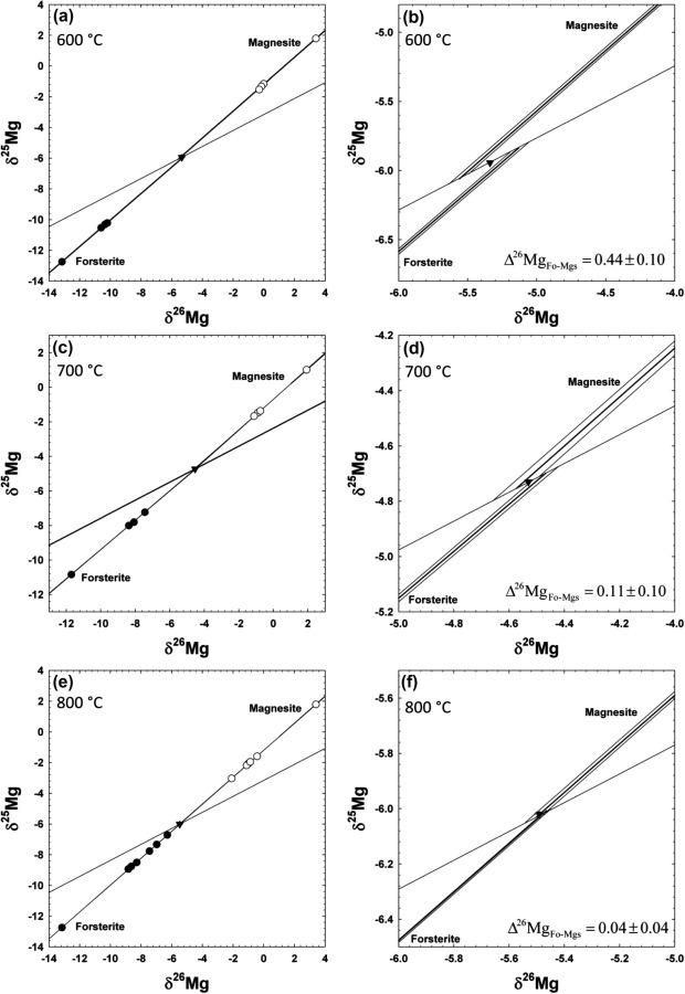 Experimental Determination Of Equilibrium Magnesium Isotope