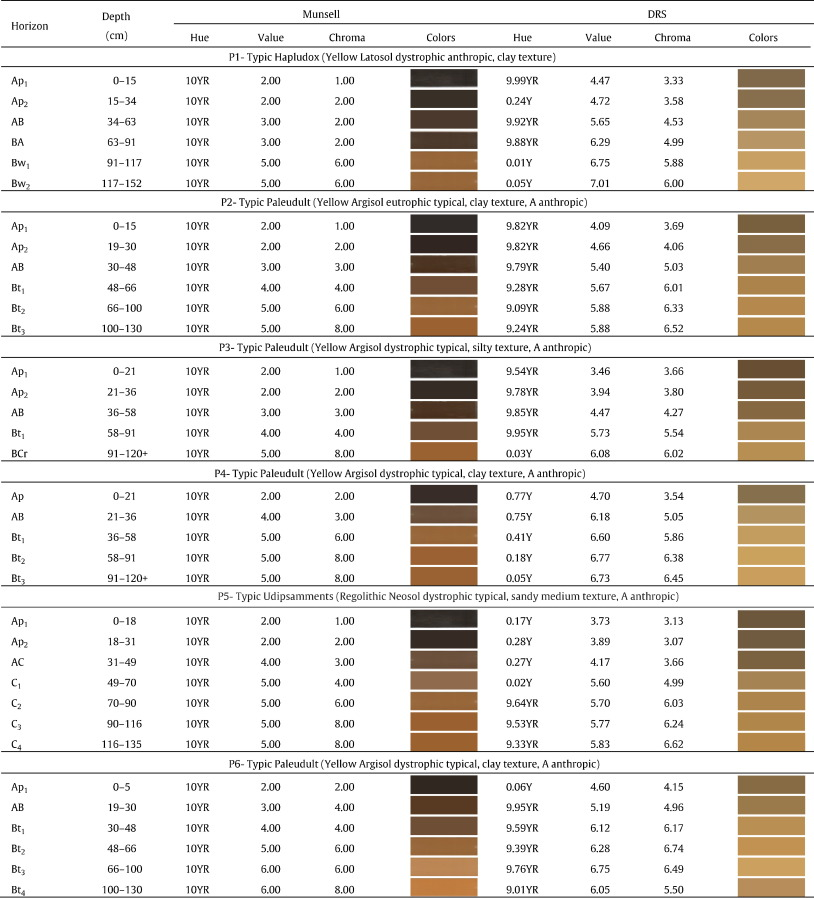 Characteristics Of Color And Iron Oxides Of Clay Fraction In