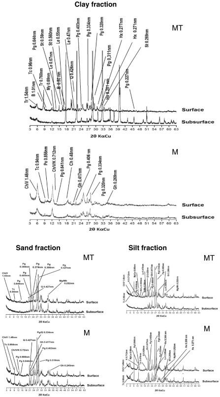 Biota And Geomorphic Processes As Key Environmental Factors