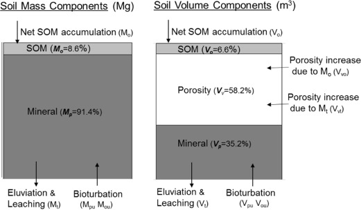 Soil organic matter accumulation in relation to changing
